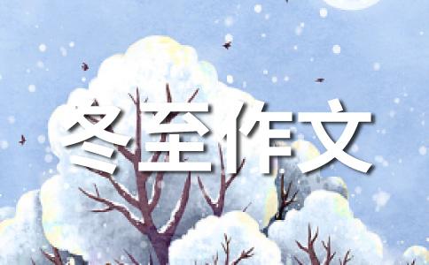 冬至500字作文